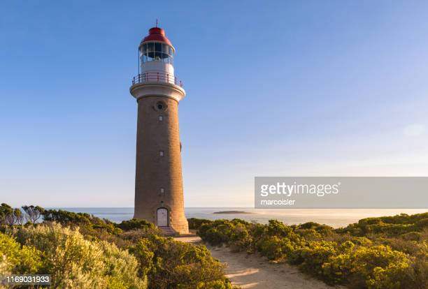 cape du couedic lighthouse, ikara-flinders national park, kangaroo island, south australia, australia - kangaroo island stock pictures, royalty-free photos & images