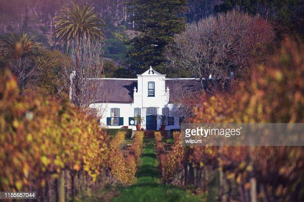 cape dutch homestead and wine estate low vineyard angle - constantia stock pictures, royalty-free photos & images