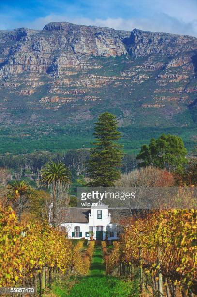 cape dutch homestead and wine estate wide view with mountains - south africa stock pictures, royalty-free photos & images