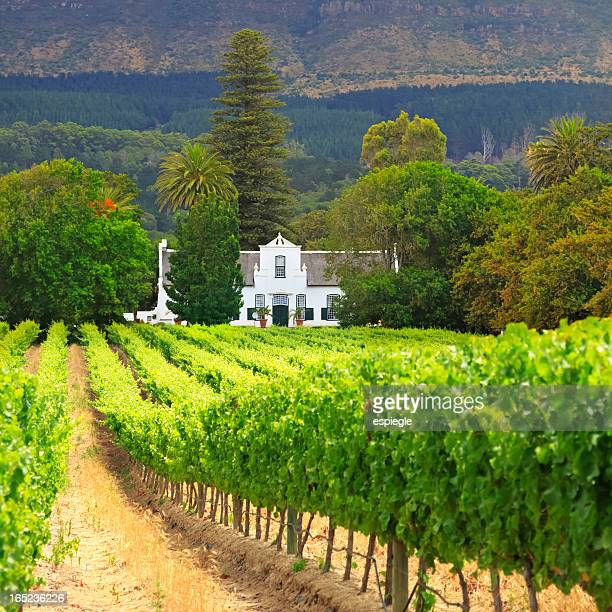 Cape Dutch Manor House and Vineyard, South Africa