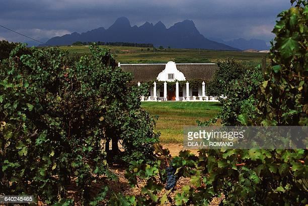 Cape Dutch style Merluust Wine Estate Stellenbosch Western Cape South Africa