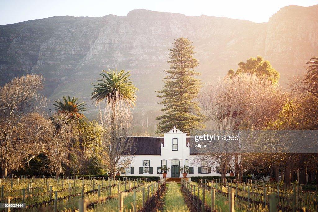Cape Dutch Winelands Architecture : Stock Photo