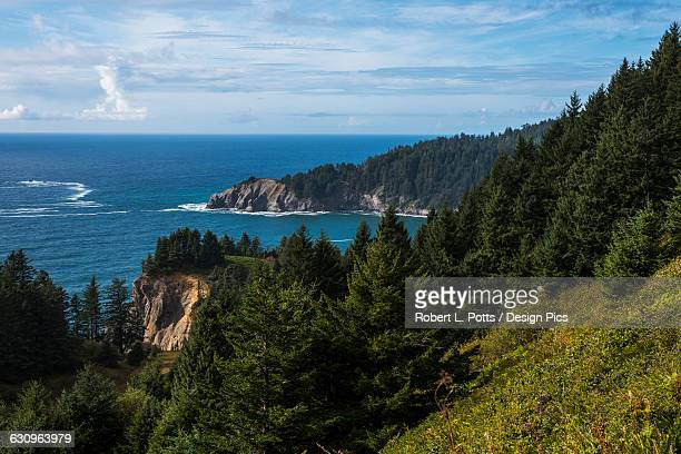 cape falcon extends into the pacific ocean - manzanita stock pictures, royalty-free photos & images