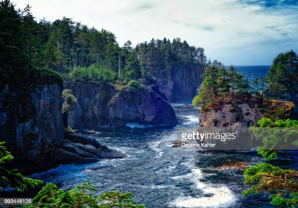 cape flattery cove - cape flattery stock photos and pictures