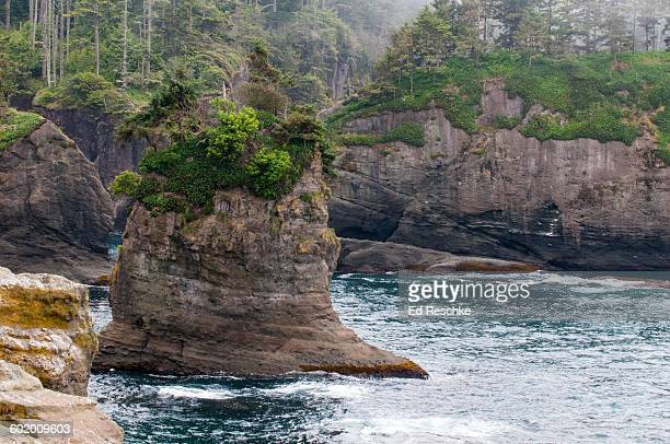 Cape Flattery, northwesternmost point in lower 48