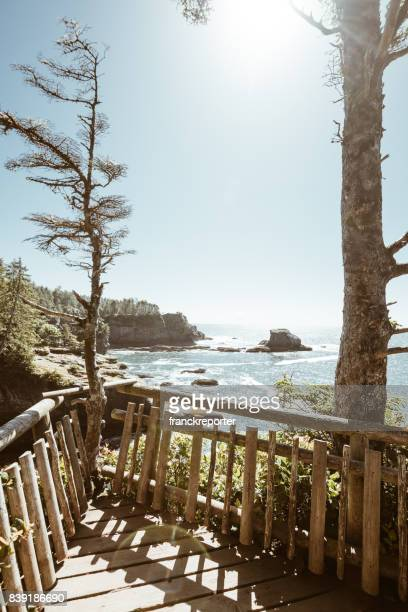 cape flattery view in washington state - cape flattery stock photos and pictures