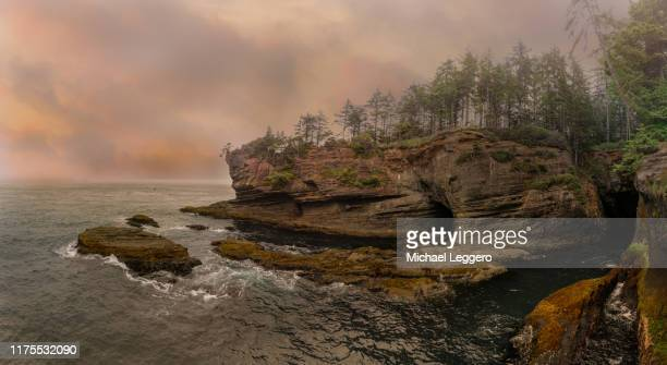 cape flattery washington - cape flattery stock photos and pictures