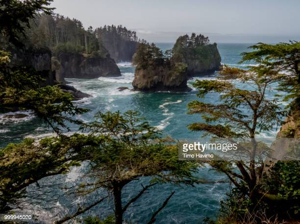 cape flattery washington usa; copyright timo havimo - cape flattery stock photos and pictures