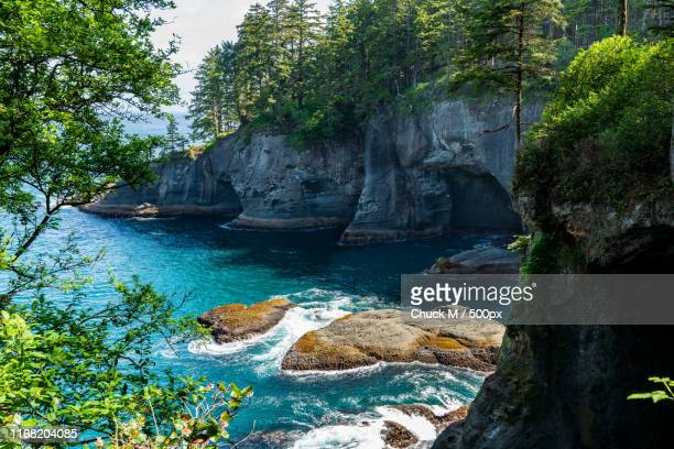 cape flattery x - cape flattery stock photos and pictures