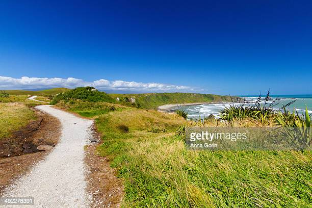 Cape Foulwind Walkway on summer afternoon, NZ