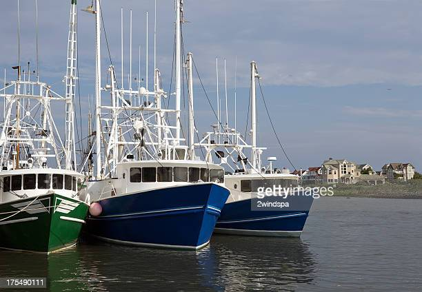 cape may fishing fleet - cape may stock pictures, royalty-free photos & images