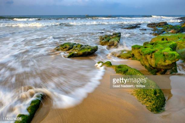 cape mount beach - sind stock photos and pictures