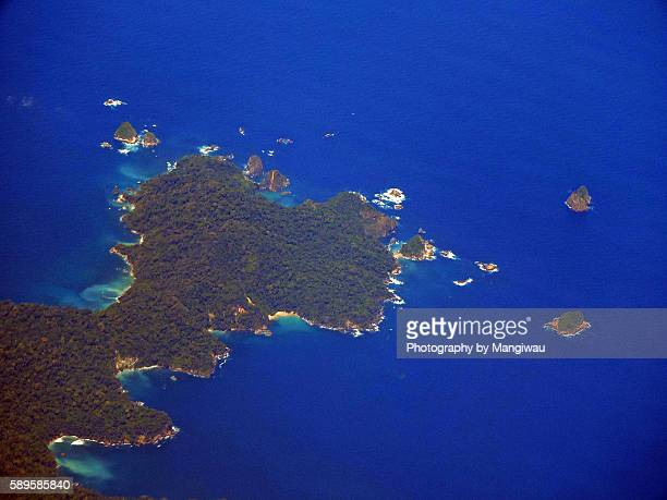 cape pemirsan - green turtle stock pictures, royalty-free photos & images