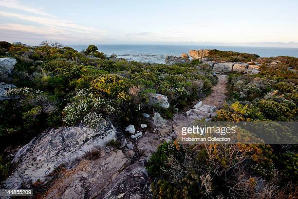Cape Peninsula National Park, Cape of Good Hope