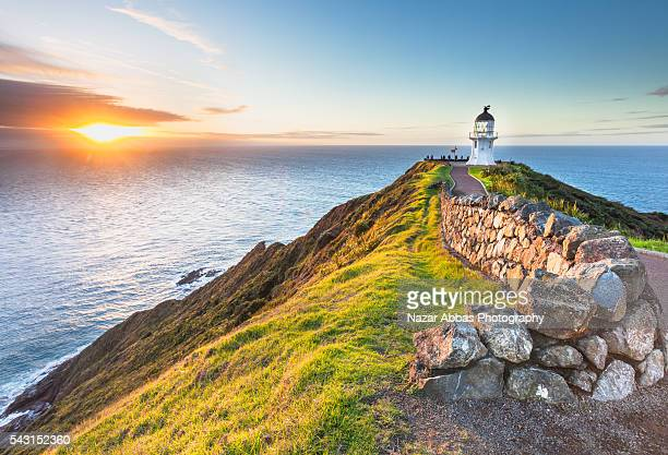 cape reinga - northland new zealand stock pictures, royalty-free photos & images