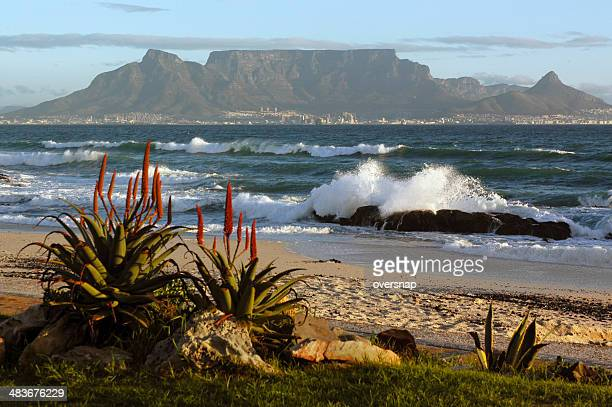 cape town and table mountain - table mountain stock pictures, royalty-free photos & images