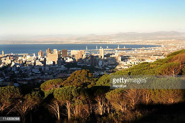 cape town from table mt - south africa stock pictures, royalty-free photos & images