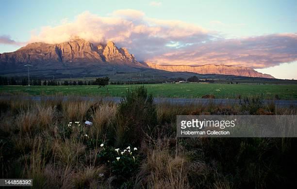 Cape Wine Route Worcester Western Cape