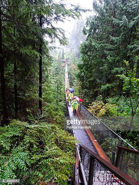 Capilano Bridge in the rain