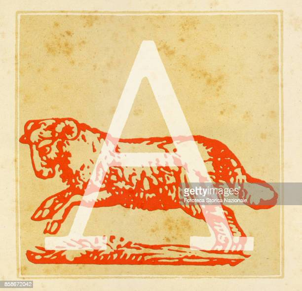 Capital letter A with Aries Zodiac sign Digital illustration realized by assembling 19th century printing elements by Elena Piccini Italy Milan 2017