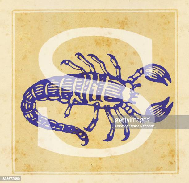 Capital letter S with zodiac sign of Scorpio Digital illustration realized by assembling 19th century printing elements by Elena Piccini Italy Milan...