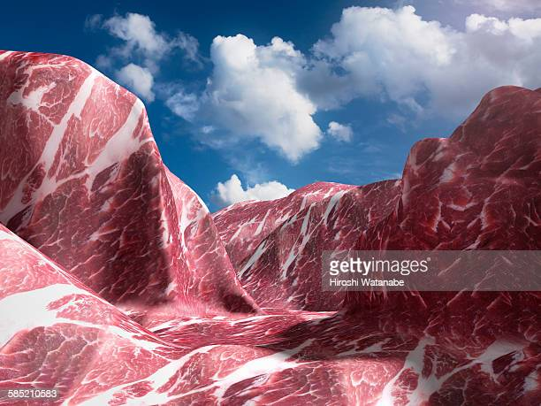 el capitan that made of meat. (pork) - land feature stock pictures, royalty-free photos & images
