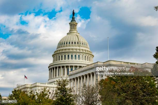 us capitol over the trees - architectural dome stock pictures, royalty-free photos & images