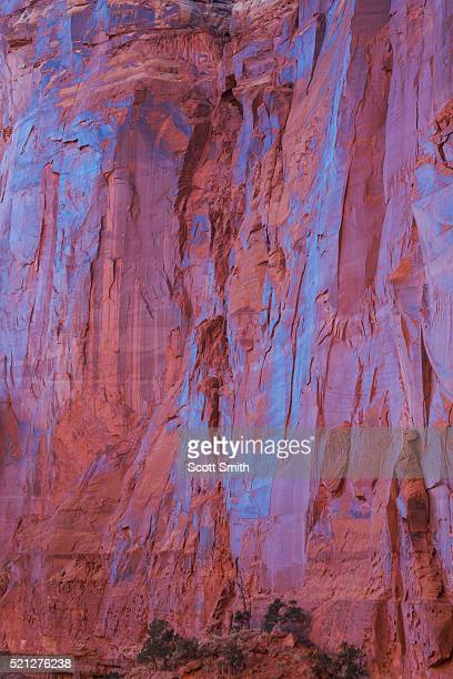 capitol reef national park, utah. usa - bedrock stock pictures, royalty-free photos & images