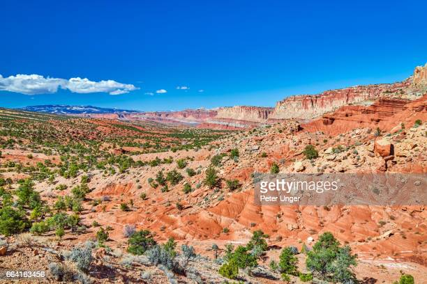 capitol reef national park, utah,usa - capitol reef national park stock pictures, royalty-free photos & images