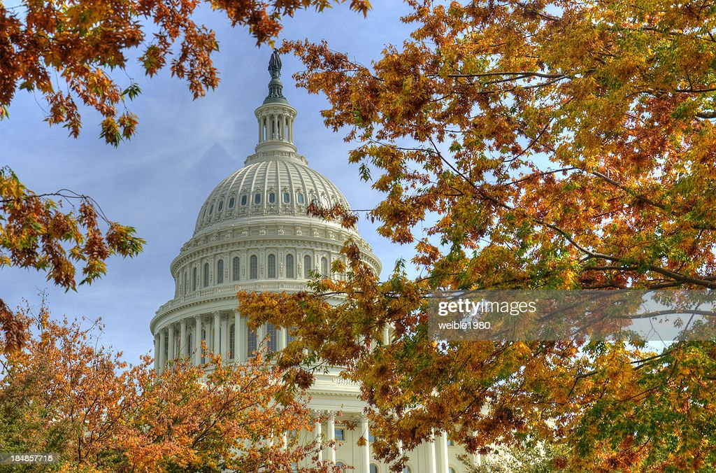 Capitol Washington DC in autumn : Stock Photo