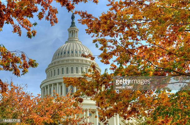 capitol washington dc in autumn - washington dc stock pictures, royalty-free photos & images