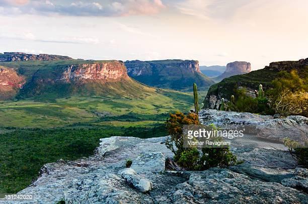 capão valley - parco nazionale di chapada diamantina foto e immagini stock