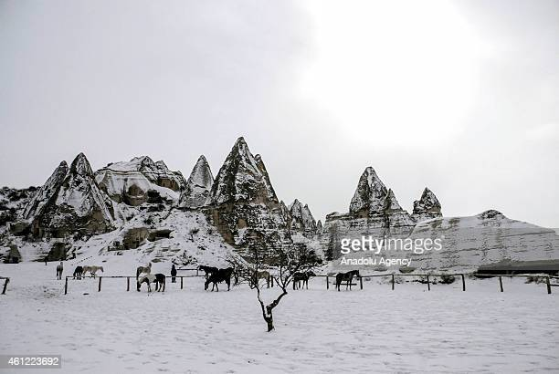 Cappadocia's land of the beautiful horses' is seen under snow in Nevsehir's province on January 08 2015 Heavy winter conditions are being effective...