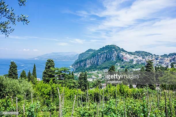 カプリ島の眺め、イタリア