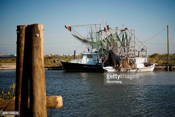 Captain Devin Cheramie prepares his shrimping boat for the day's catch off the coast of Grand Isle Louisiana US on Wednesday Oct 22 2014 Louisiana...
