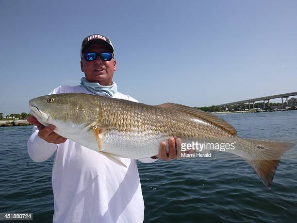 Captain Glyn Austin holds up a 36inch redfish caught by Sue Cocking using a live crab in Sebastian Inlet Fla