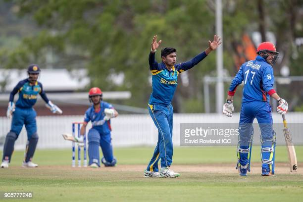 Captain Kamindu Mendis of Sri Lanka appeals unsuccessfully during the ICC U19 Cricket World Cup match between Sri Lanka and Afghanistan at Cobham...
