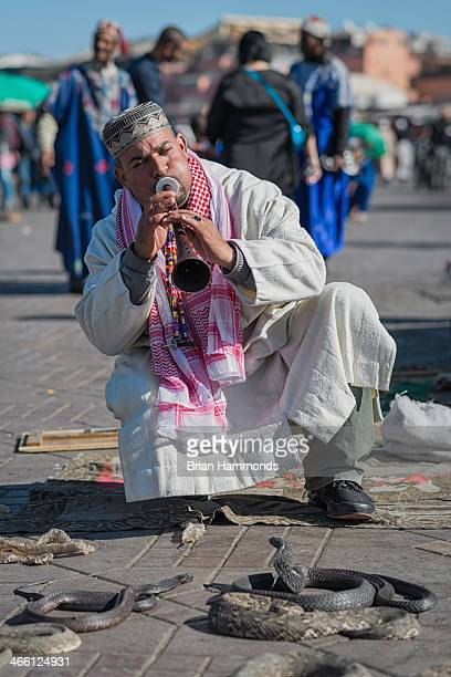 CONTENT] Capture of a snake charmer in Marrakech Morocco