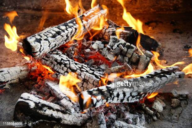 capture of wood fire - 薪 ストックフォトと画像