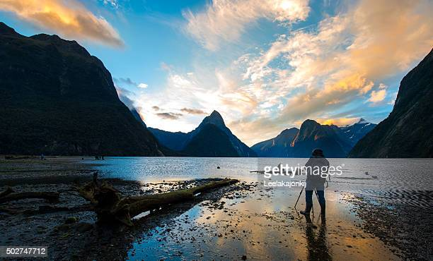 capture the light - new zealand stockfoto's en -beelden