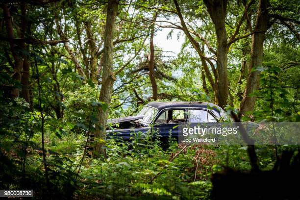 car abandoned in forest, appley bridge, lancashire, uk - abandoned car stock photos and pictures