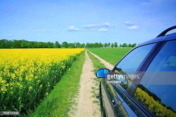Car among the fields - country landscape