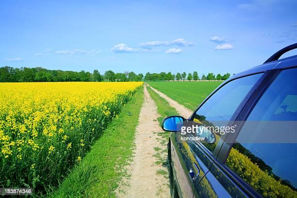 Auto in den Feldern-Land Landschaft
