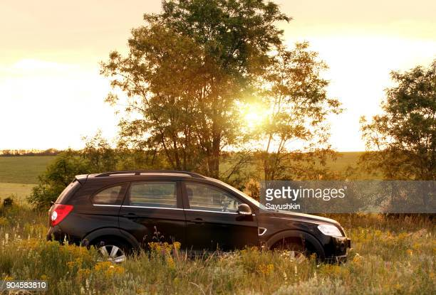 car chevrolet captiva on a sunset background. - chevrolet stock pictures, royalty-free photos & images