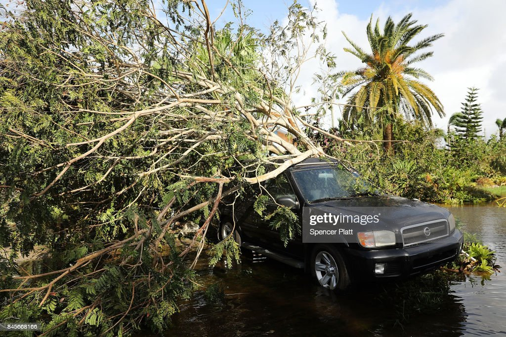 A car covered by a downed tree sits along a flooded road the morning after Hurricane Irma swept through the area on September 11, 2017 in Naples, Florida. Hurricane Irma made another landfall near Naples yesterday after inundating the Florida Keys. Electricity was out in much of the region with localized flooding.