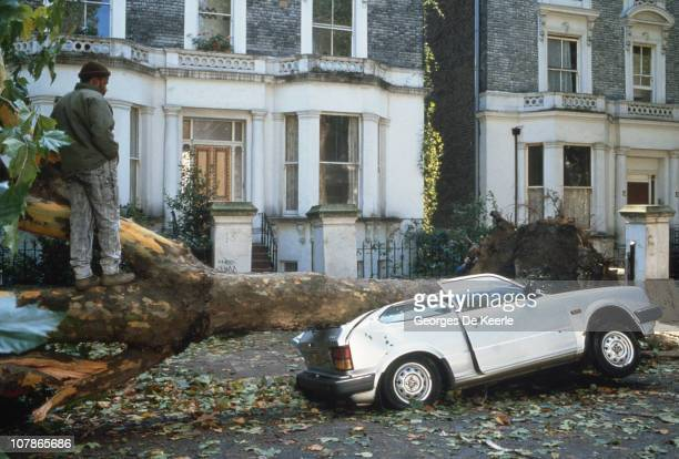 A car crushed by a fallen tree in England in the aftermath of the Great Storm of 1987 17th October 1987