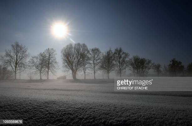 A car drives along an alley near the small Bavarian village of Eichenau near Munich southern Germany during foggy winter weather with temperatures...