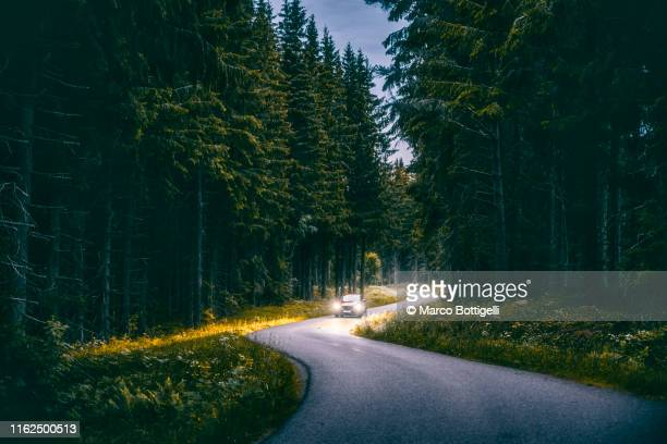 car driving in a forest at night in smaland region, sweden - forest road stock pictures, royalty-free photos & images