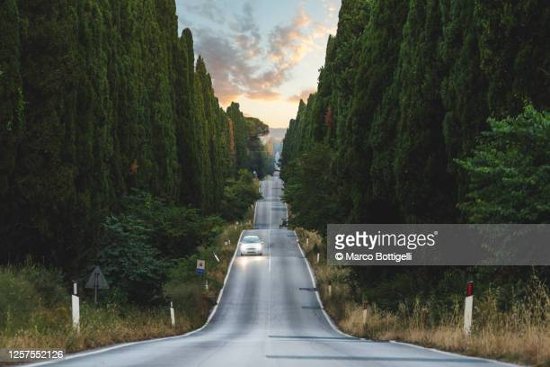 car driving on idyllic road lined with cypresses, tuscany, italy - diminishing perspective stock pictures, royalty-free photos & images