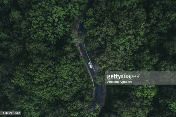 car driving through a forest as seen from above, south australia - straßenverkehr stock-fotos und bilder